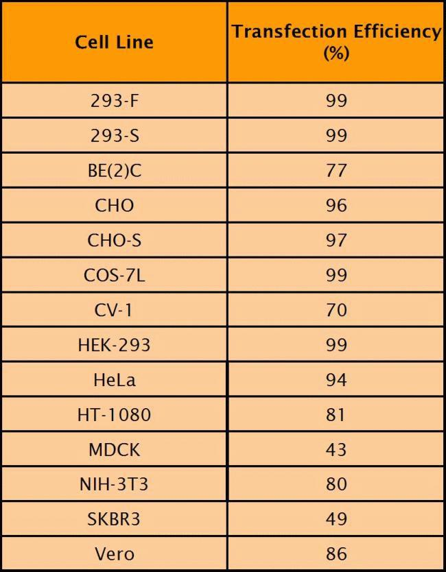 Lipofectamine™ 2000 cell line performance